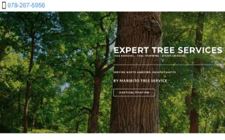 Tree service North Andover